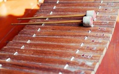 The Hardwork and Art Behind Creating Wooden Musical Instruments